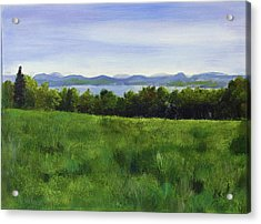 Cow Pasteur With A View Acrylic Print
