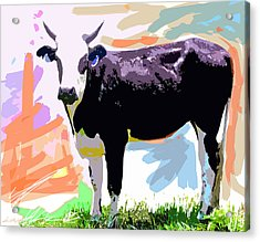 Cow Time Acrylic Print by David Lloyd Glover
