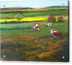 Cowgirls Acrylic Print