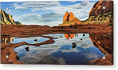 Cowpie 07-016p Acrylic Print by Scott McAllister