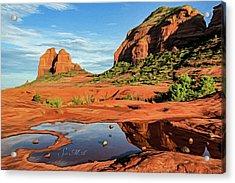 Cowpie 07-101 Acrylic Print by Scott McAllister