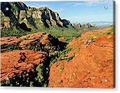 Cowpie 07-114 Acrylic Print by Scott McAllister