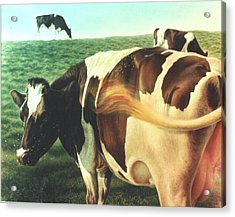 Cows 2 Acrylic Print by Hans Droog