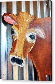 Cows 4 Acrylic Print