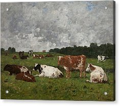 Cows At The Pasture Acrylic Print by Eugene Louis Boudin