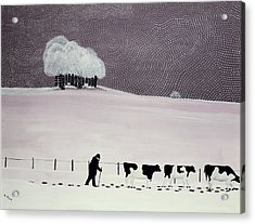 Cows In A Snowstorm Acrylic Print by Maggie Rowe
