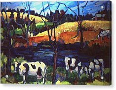 Cows In Landscape Acrylic Print