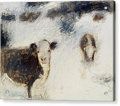 Cows In Snow Acrylic Print by Ruth Sharton