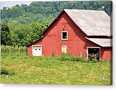 Cows In The Barn Acrylic Print by Jan Amiss Photography