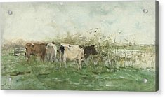 Cows With A Puddle Acrylic Print by Willem Maris
