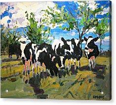 Cowscape Acrylic Print by Brian Simons