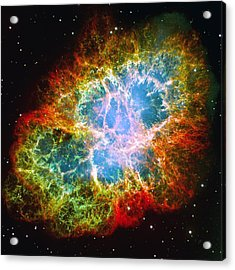Crab Nebula Acrylic Print by Don Hammond