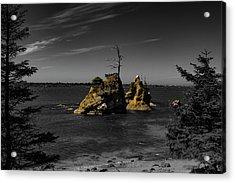 Crab Rock Acrylic Print