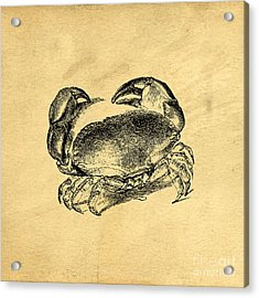 Acrylic Print featuring the drawing Crab Vintage by Edward Fielding