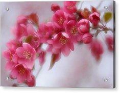 Crabapple Blossom - Dark Pink Acrylic Print