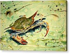 Crabby Appleton Acrylic Print by Shirley Sykes Bracken