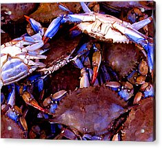 Acrylic Print featuring the digital art Crabs At The Market by Timothy Bulone
