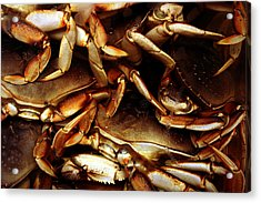 Crabs Awaiting Their Fate Acrylic Print