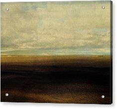 Cracked Desert Acrylic Print