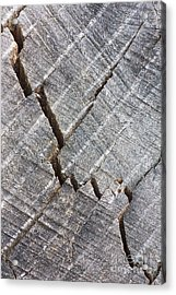 Cracked Acrylic Print by Steven Dillon