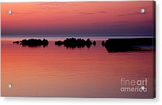 Cracking Dawn Acrylic Print by Joe  Ng