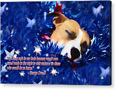 Acrylic Print featuring the photograph Cradled By A Blanket Of Stars And Stripes - Quote by Shelley Neff
