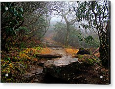 Acrylic Print featuring the photograph Craggy Gardens by Jessica Brawley
