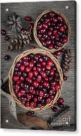 Cranberries In Baskets Acrylic Print by Elena Elisseeva