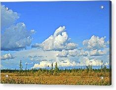 Cranberry Bog Cloud Bank Acrylic Print