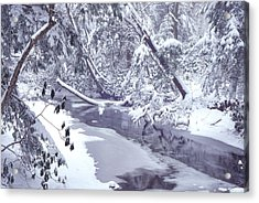 Cranberry River Winter Heavy Snow Acrylic Print by Thomas R Fletcher
