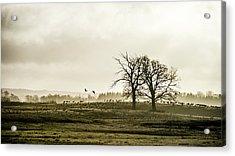 Crane Hill Acrylic Print by Torbjorn Swenelius