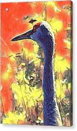 Crane View Acrylic Print