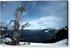 Crater Lake Acrylic Print by Bonnie Bruno