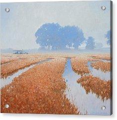 Crawfish In The Mist Acrylic Print