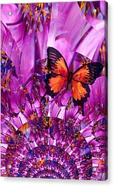 Crazy Flower Butterfly Acrylic Print