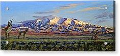 Crazy Mountains-morning Acrylic Print