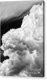 Creamy Or Lumpy? Acrylic Print by Dennis Wagner