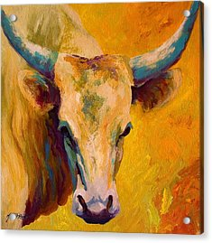 Creamy Texan - Longhorn Acrylic Print by Marion Rose