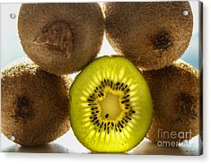Creative Kiwi Light Acrylic Print