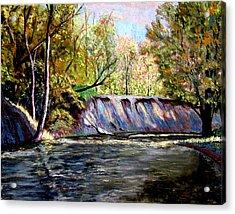 Creek Bank Acrylic Print by Stan Hamilton