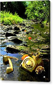 Creek Call Acrylic Print