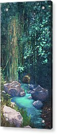 Creek Chincultik Acrylic Print by Carla Woody