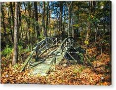 Creek Crossing Acrylic Print by Tom Mc Nemar