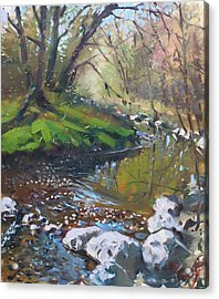 Creek In The Woods Acrylic Print