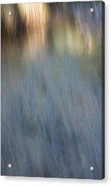 Creek Light Acrylic Print