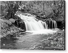 Creek Merge Waterfall In Black And White Acrylic Print
