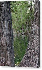Creek Reflections Acrylic Print