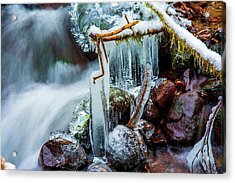 Creekside Icicles Acrylic Print
