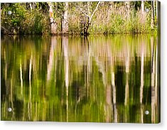 Acrylic Print featuring the photograph Creekside Reflections by Bob Decker
