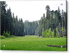 Acrylic Print featuring the photograph Crescent Meadow by Kyle Hanson